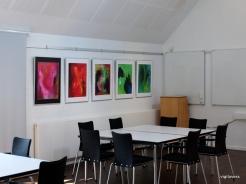 7-udstillingslokaler_før fernisering-006